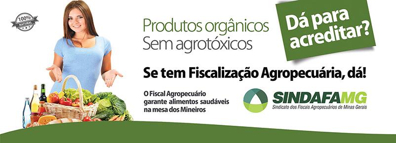 FLYER SINDAFA AGROTOXICOS